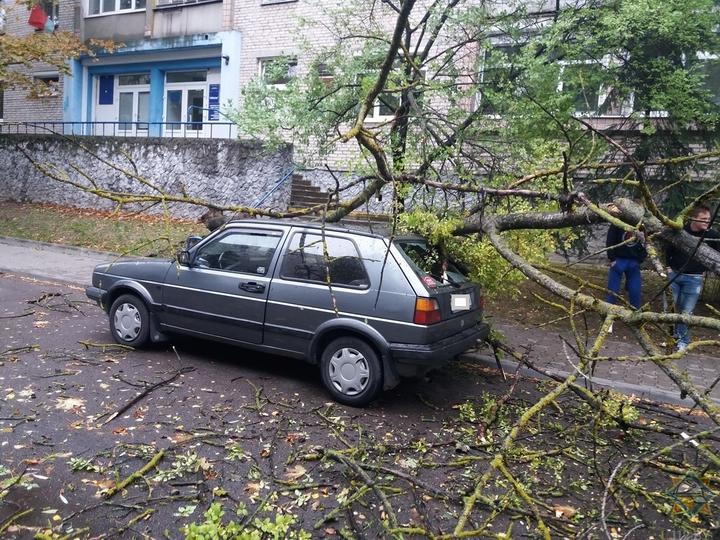 Что же ты натворил, Фабьен? Последствия урагана в Беларуси