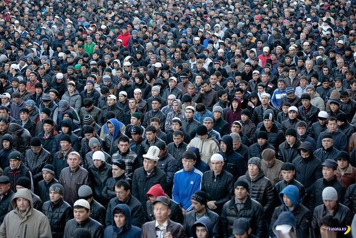 9000 мигрантов в комнате 16 м²