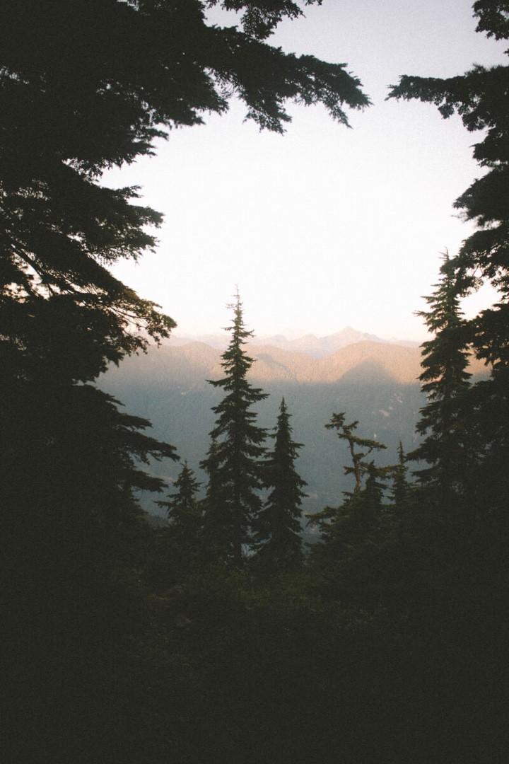 Россыпь красивых фотографий - 241