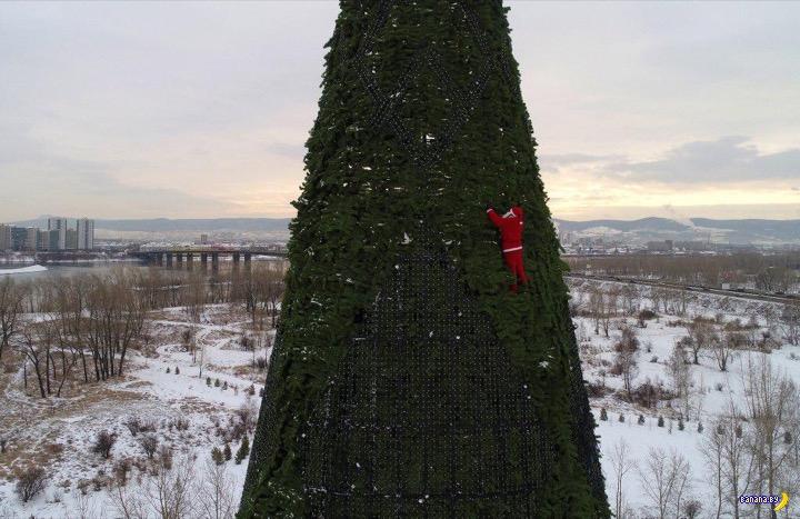 В Красноярске построили самую большую ёлку в России
