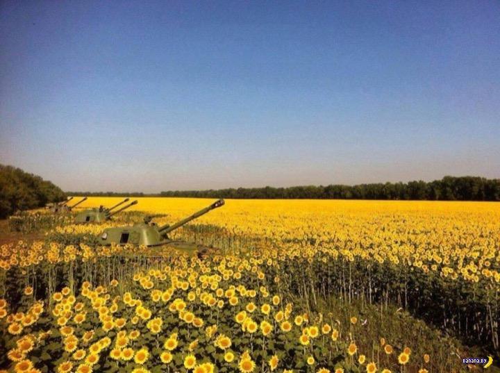 Какие продукты Украина продаёт на экспорт?