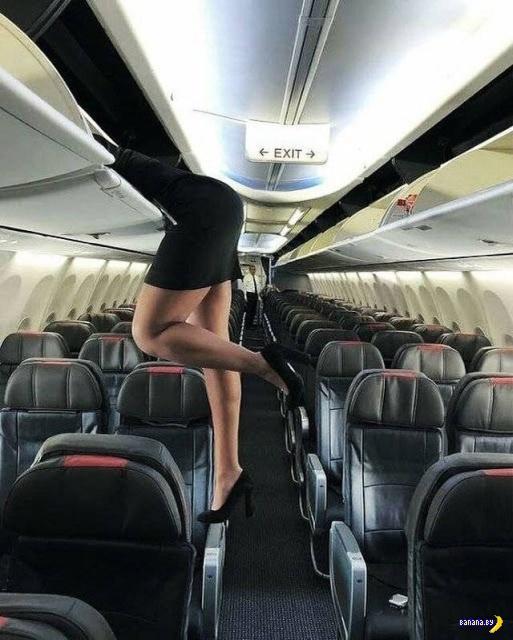 Сексуальные стюардессы с лёгкой придурью!