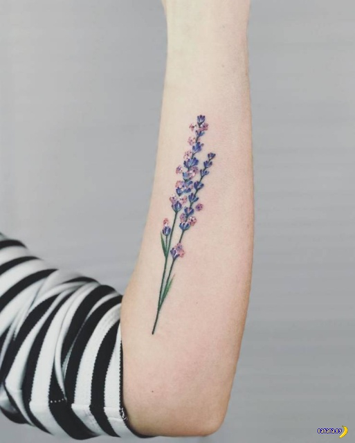 Татуировки на зависть - 113
