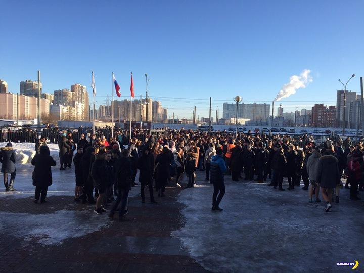 В Петербурге полное бомбалейло