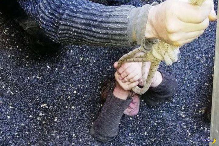 Женщину затянуло в цистерну с семечками