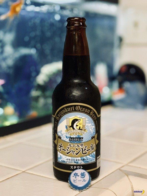 Красота крафтового пива