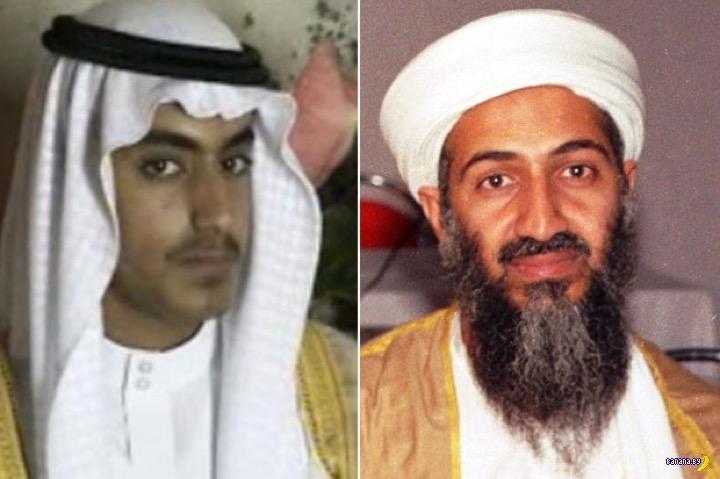 Лёгкие деньги –$1 млн за голову сына Бин Ладена!