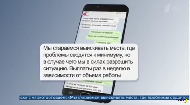 Каждый пятый московский школьник не против работать на закладках