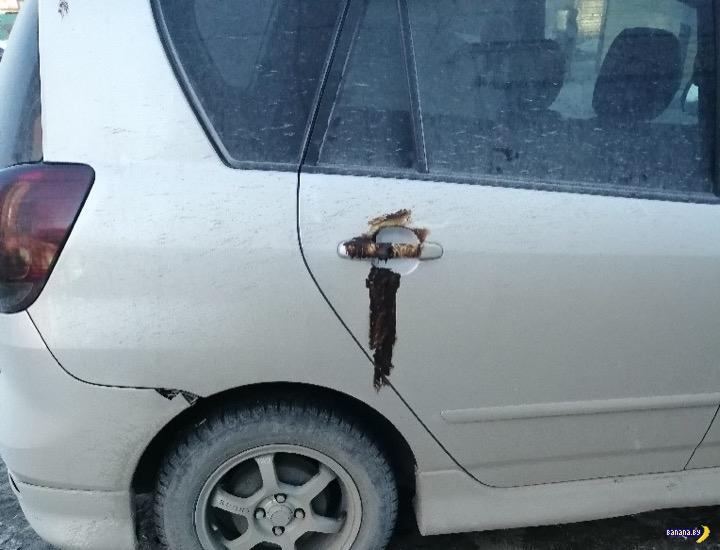 Коричневая месть за неправильную парковку