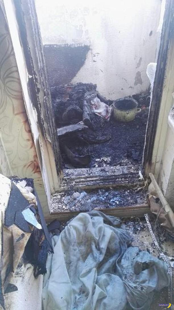В Минске залётный бычок чуть не сжег квартиру