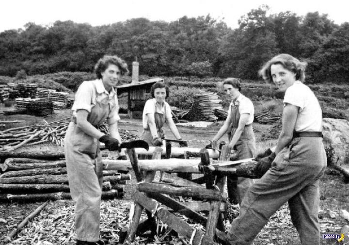 Женщины-дровосеки в США