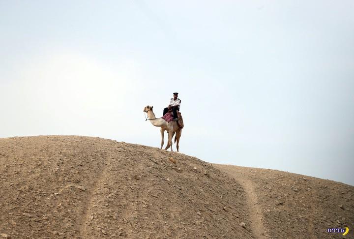 А что там в Египте?
