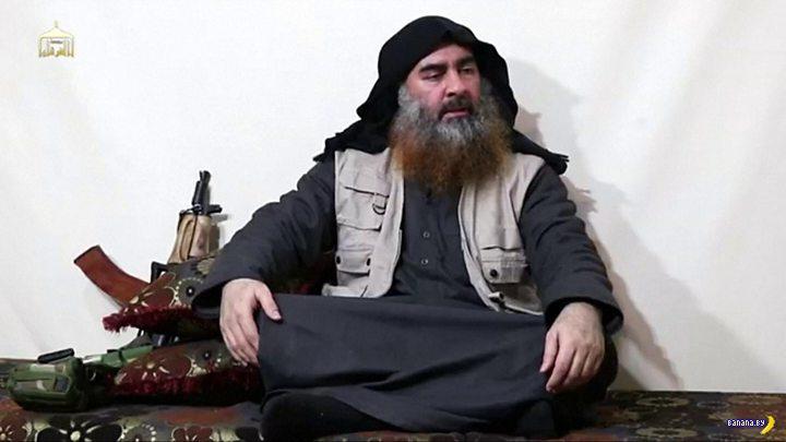 Никто не видел Абу Бакра аль-Багдади?