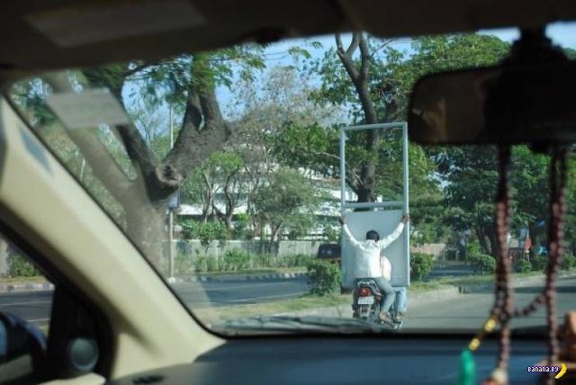 Странная дичь с автомобильных дорог