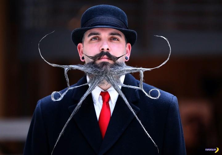 Чемпионат мира по бороде и усам 2019