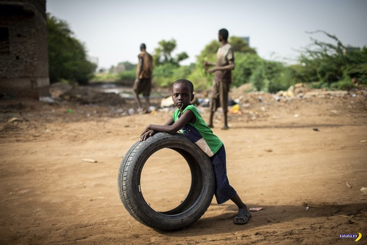 Обыкновенный Судан
