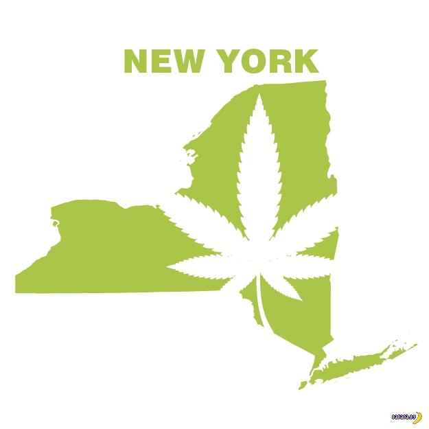 В штате Нью-Йорк легализовали марихуану