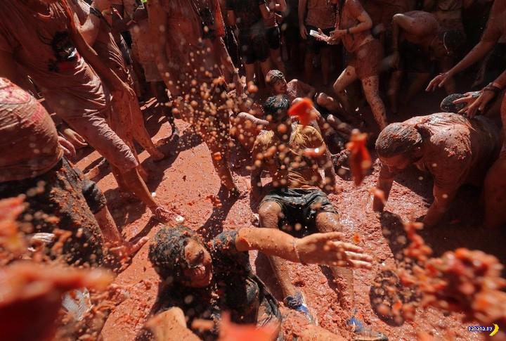 Всюду кровь и внутренности погибших помидоров