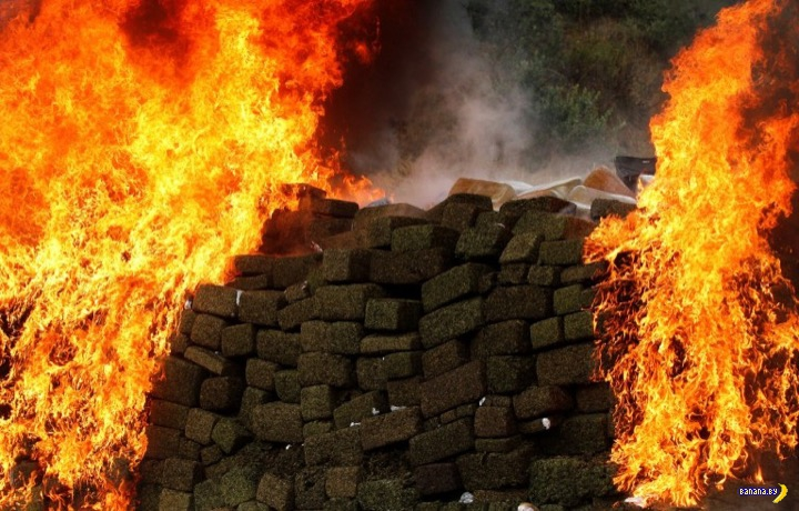 Сожгли 26 тонн отличных наркотиков