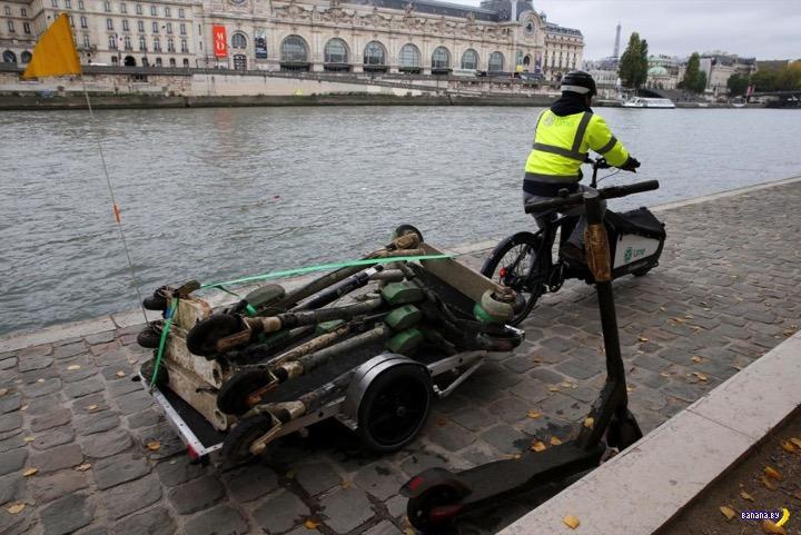 В Париже появилась новая профессия: вылавливатель самокатов