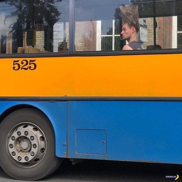 Международные люди-фрики в общественном транспорте