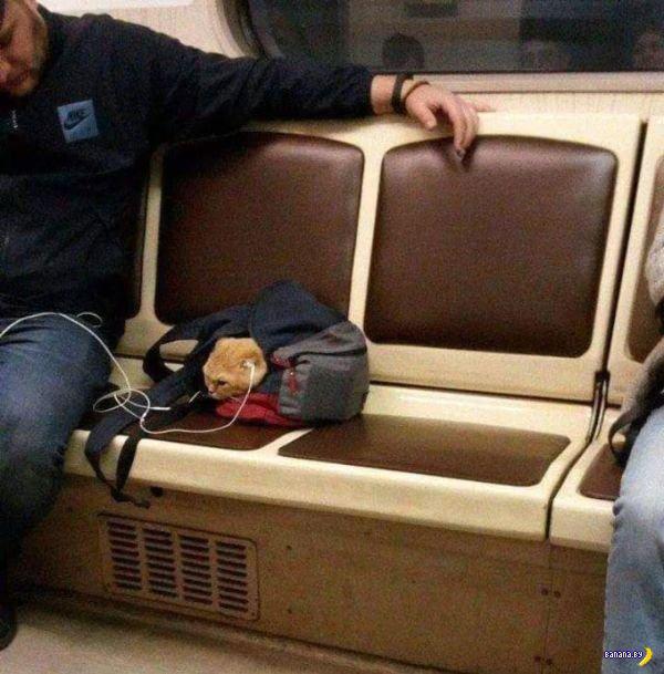 Всякие странности в этом вашем метро