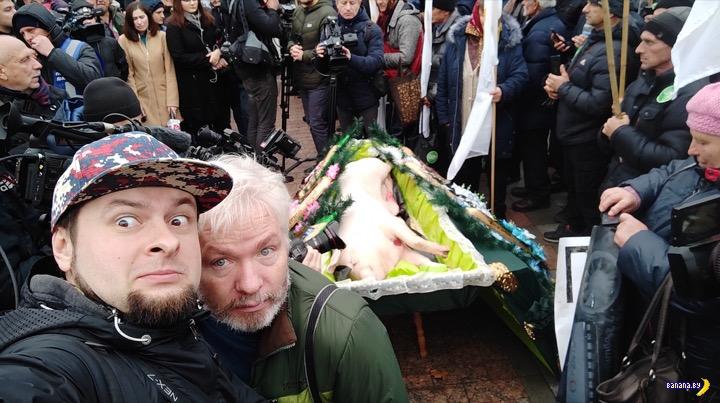 К Верховной Раде принесли свинью в гробу