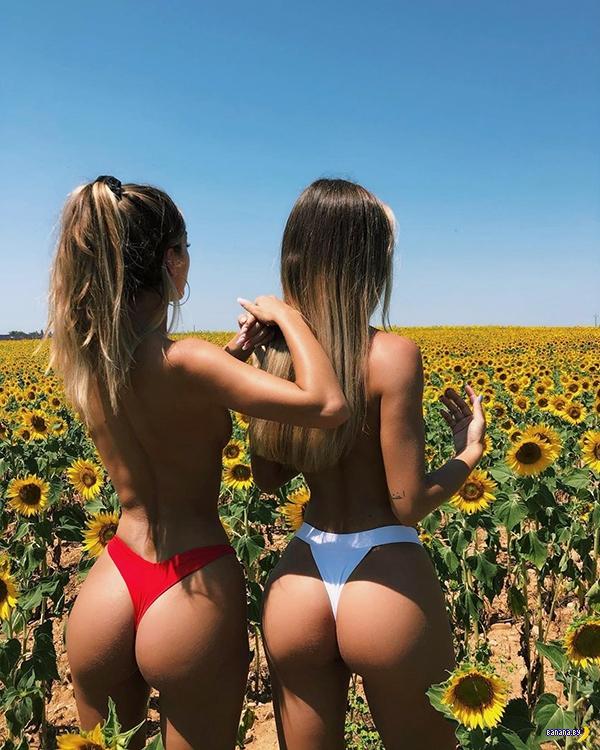 Сестрички Танто