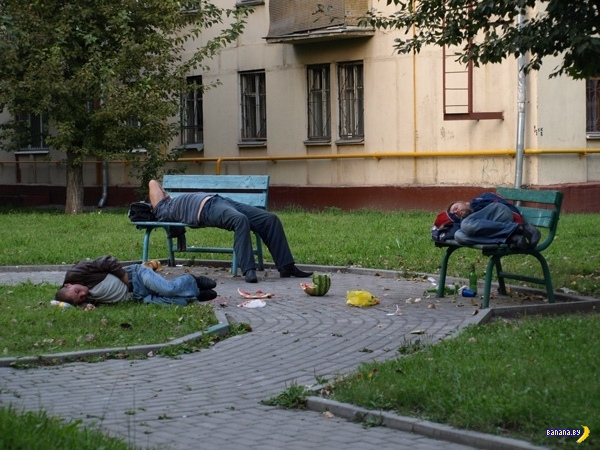 А тем временем в России - 197