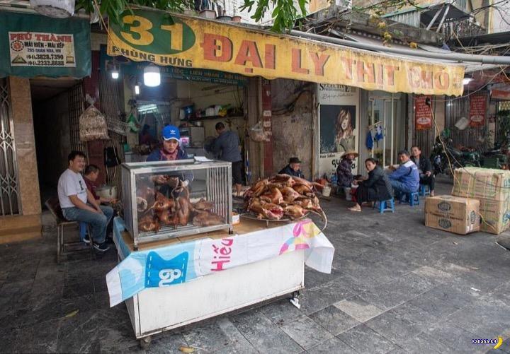Рынок собачьего мясо во Вьетнаме