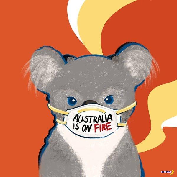 Время хайпа на пожарах в Австралии