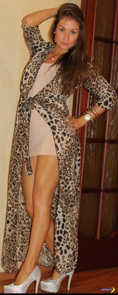 Улов из социальных сетей - 392 - Леопарды!