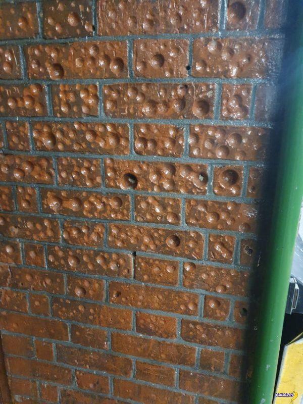 Стена в метро похожа на сыр