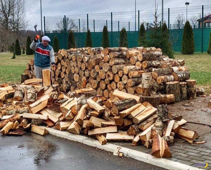 Лукашенко и дрова