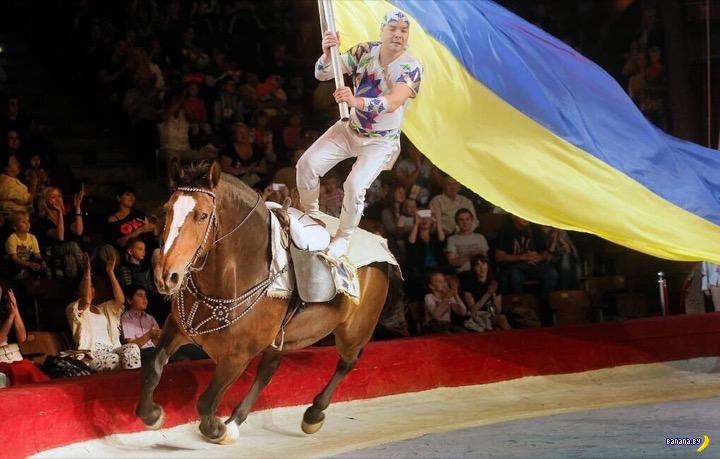 Украина отказалась от цирковых животных