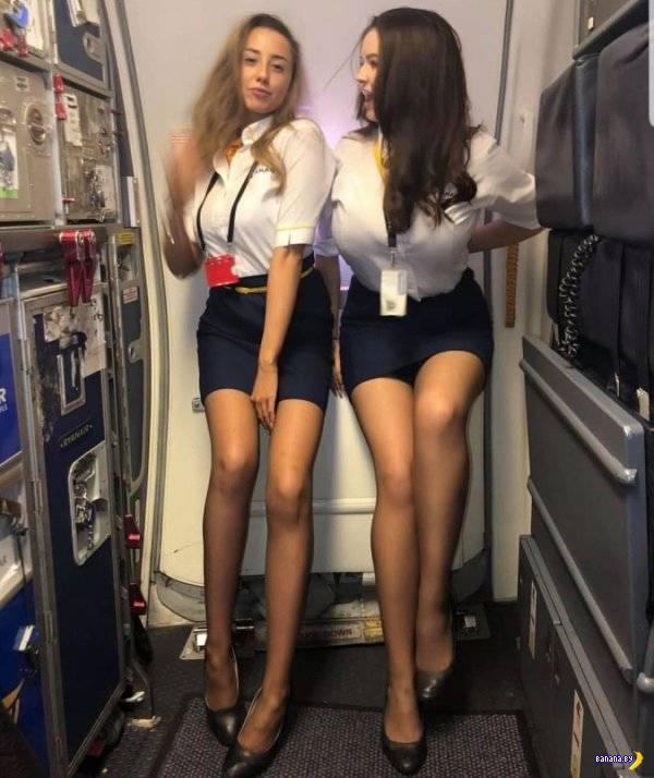 Раздеваем стюардесс! ✈️