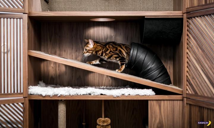 Игровой шкаф для котиков