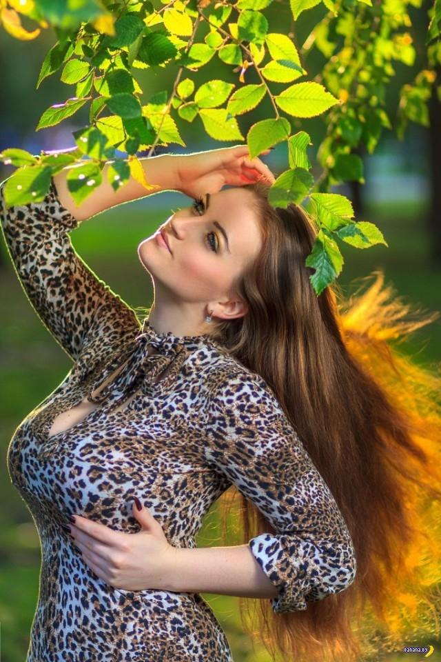 Улов из социальных сетей - 403 - Леопарды!