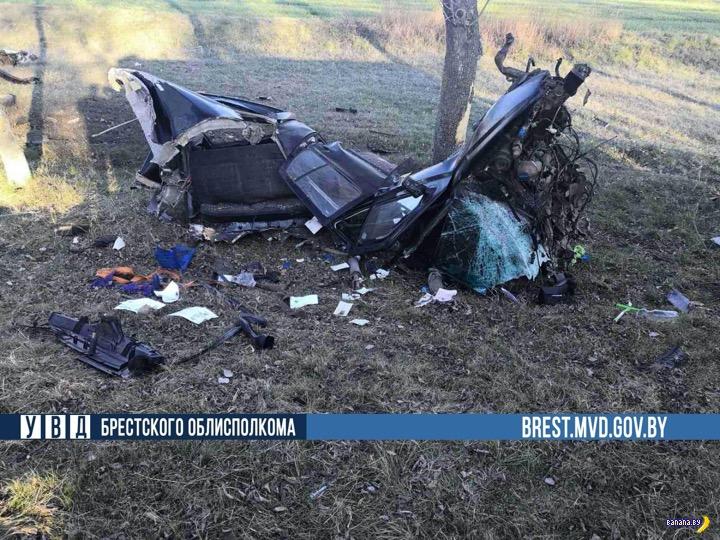 Никто не верит, но водитель жив!
