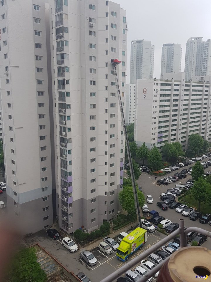 Южная Корея –спасение на высоте?