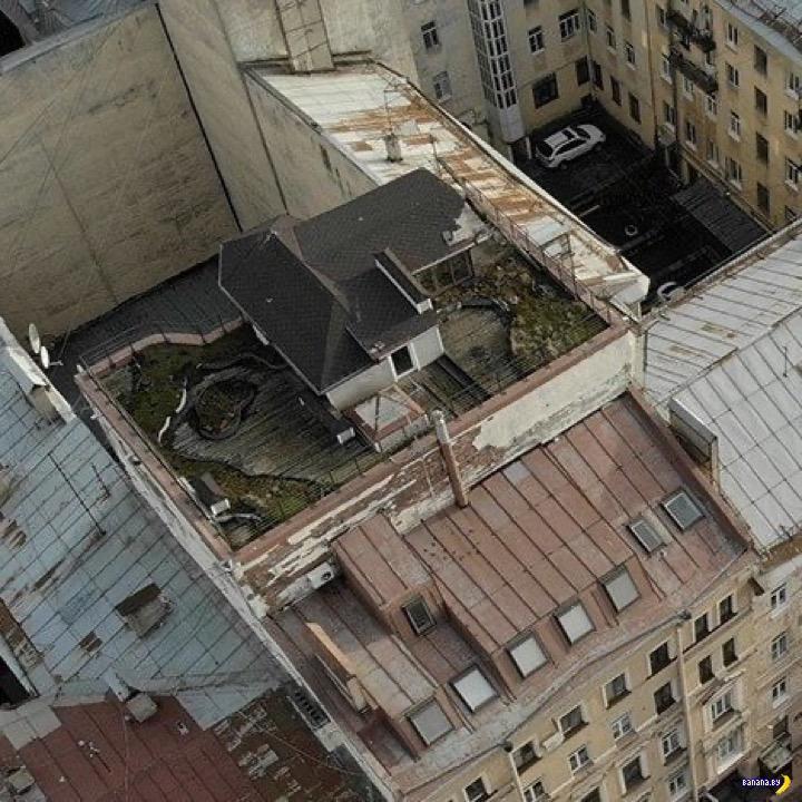 Дача в центре Санкт-Петербурга