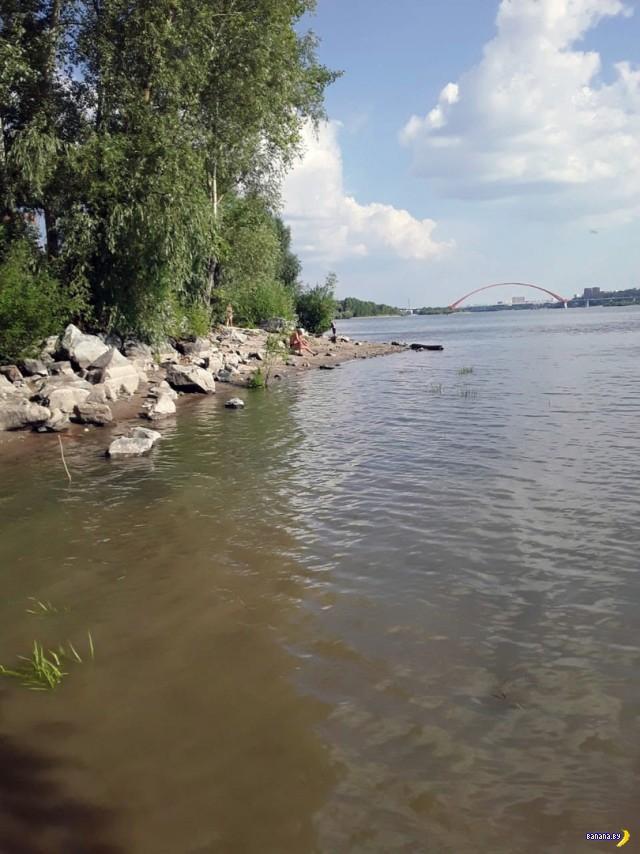 Поплавала