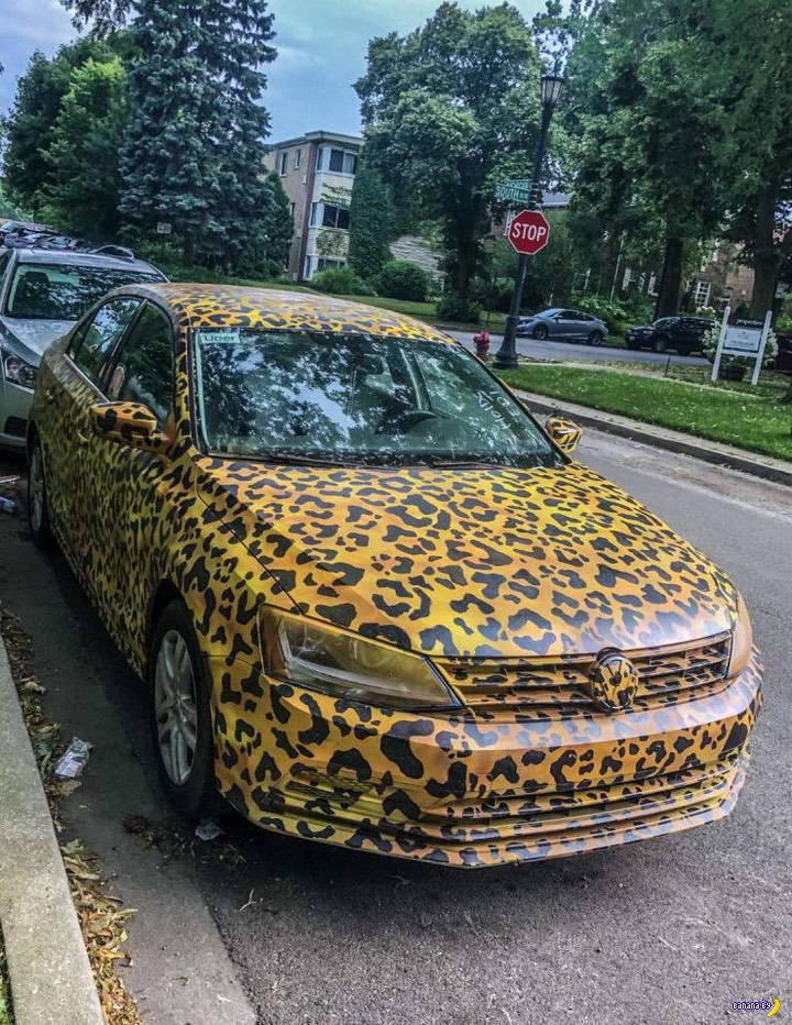 Автомобильные шутейки