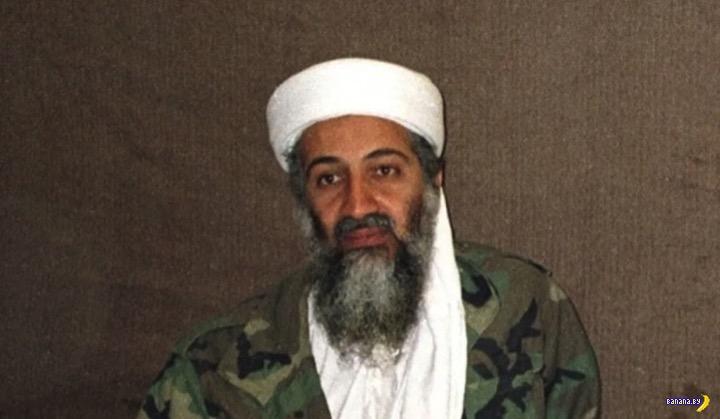 Разведка и порно Усамы бен Ладена