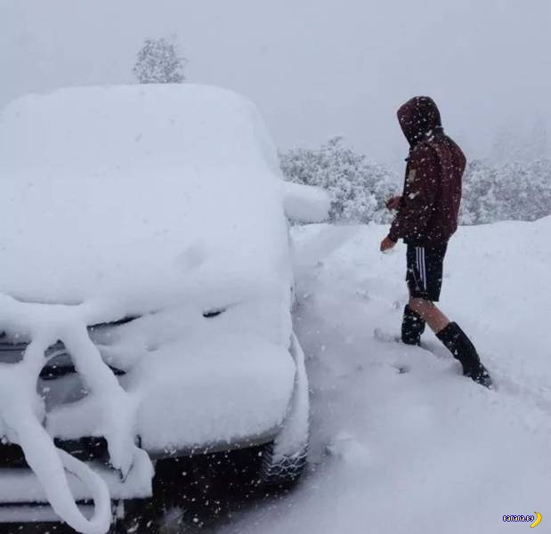 Напоминание про зиму