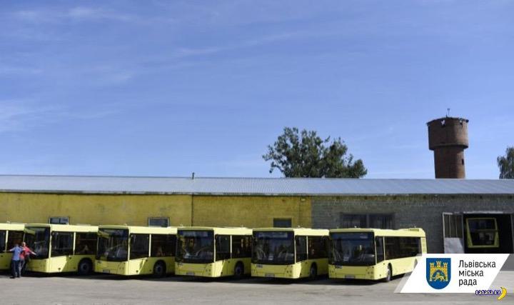 Белорусские автобусы и тяжелый выбор Львова