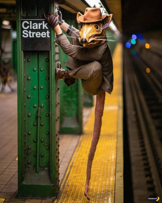 Невероятные фотографии из метро Нью-Йорка
