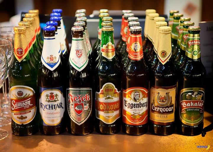 В России могут запретить чешское пиво