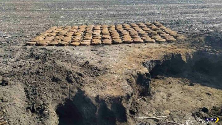 150 отличных мин в поле