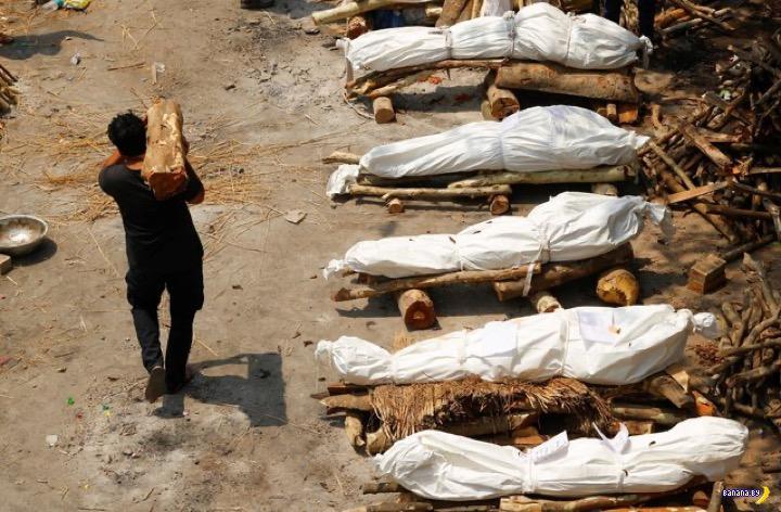 Ковидный ад в Индии